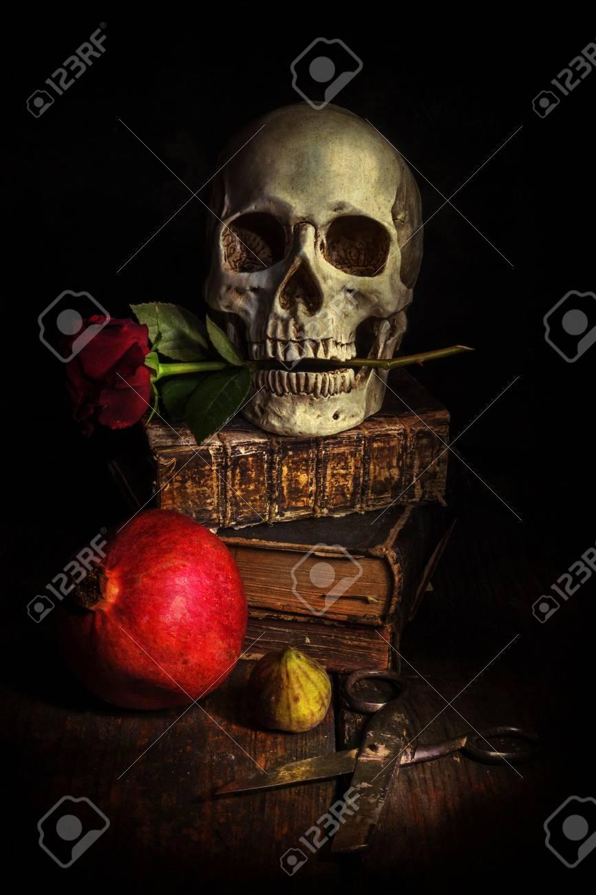 10cef8f07a1a91 Banque d'images - Sombre image de style de vie toujours avec un crâne,  modifié avec une texture grunge sombre