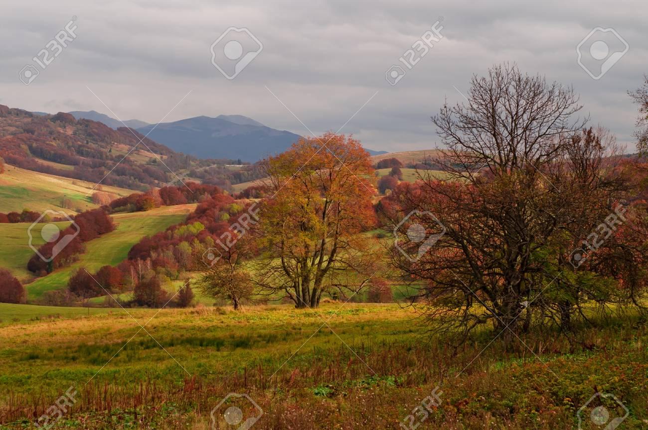 Autumn in the mountains Stock Photo - 15331140