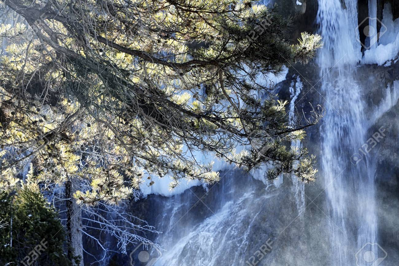 Tree Branches And Wall Of Waterfall In The Background Stock Photo Picture And Royalty Free Image Image 51460153