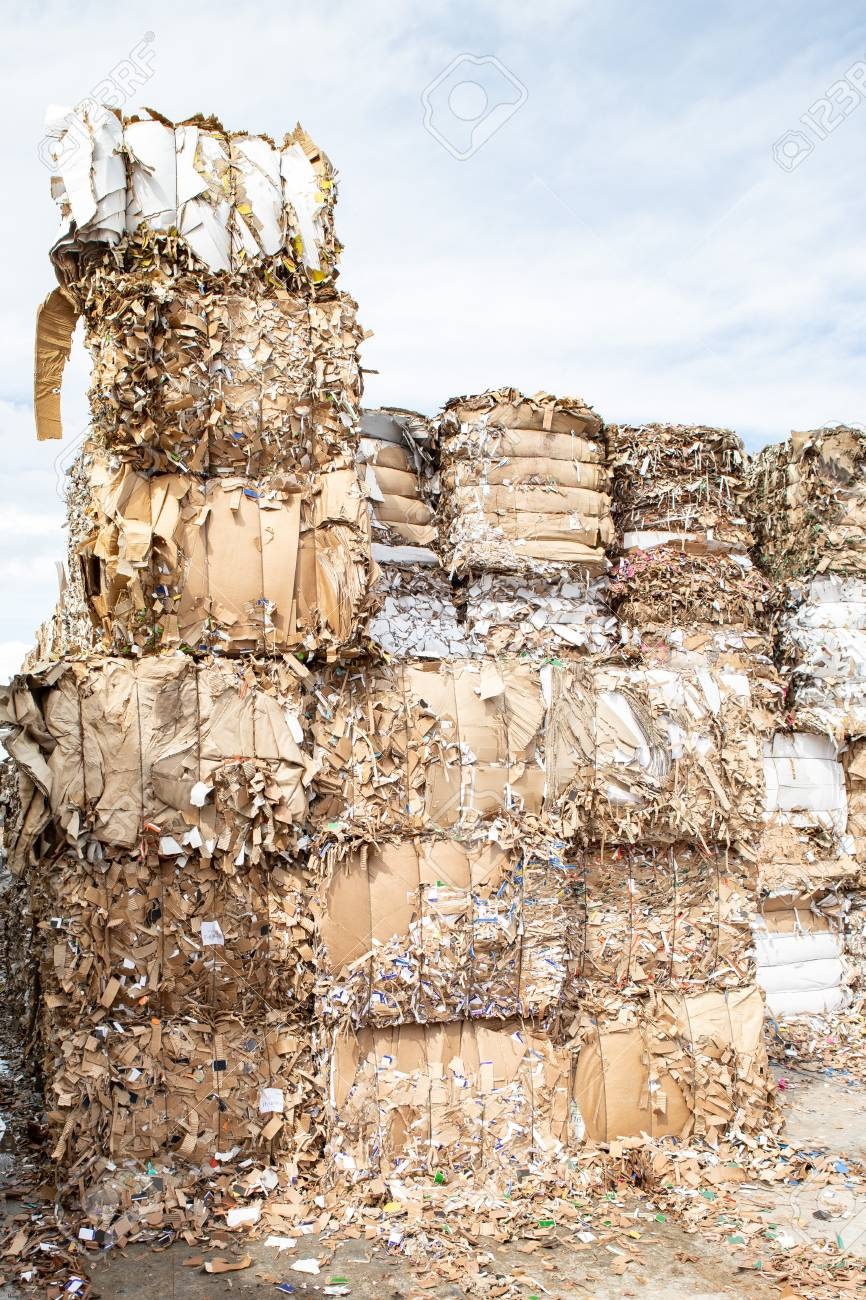 Pile of pressed waste paper bales in the yard  Waste paper recycling