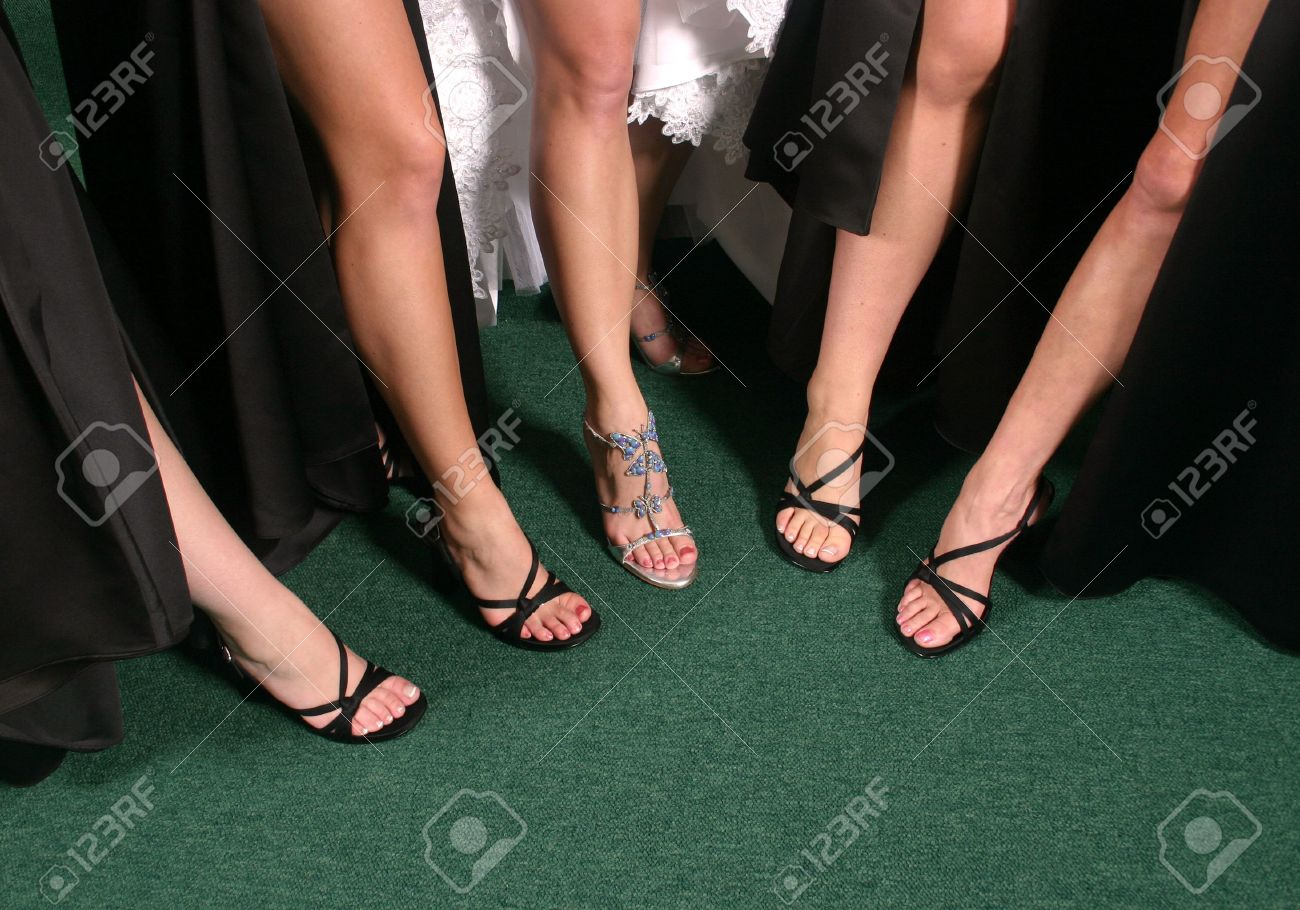 Group Of Sexy Legs Stock Photo 3042741