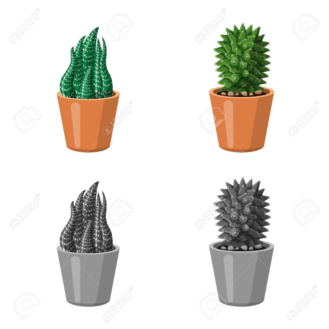 vector illustration of cactus and pot logo collection of cactus and
