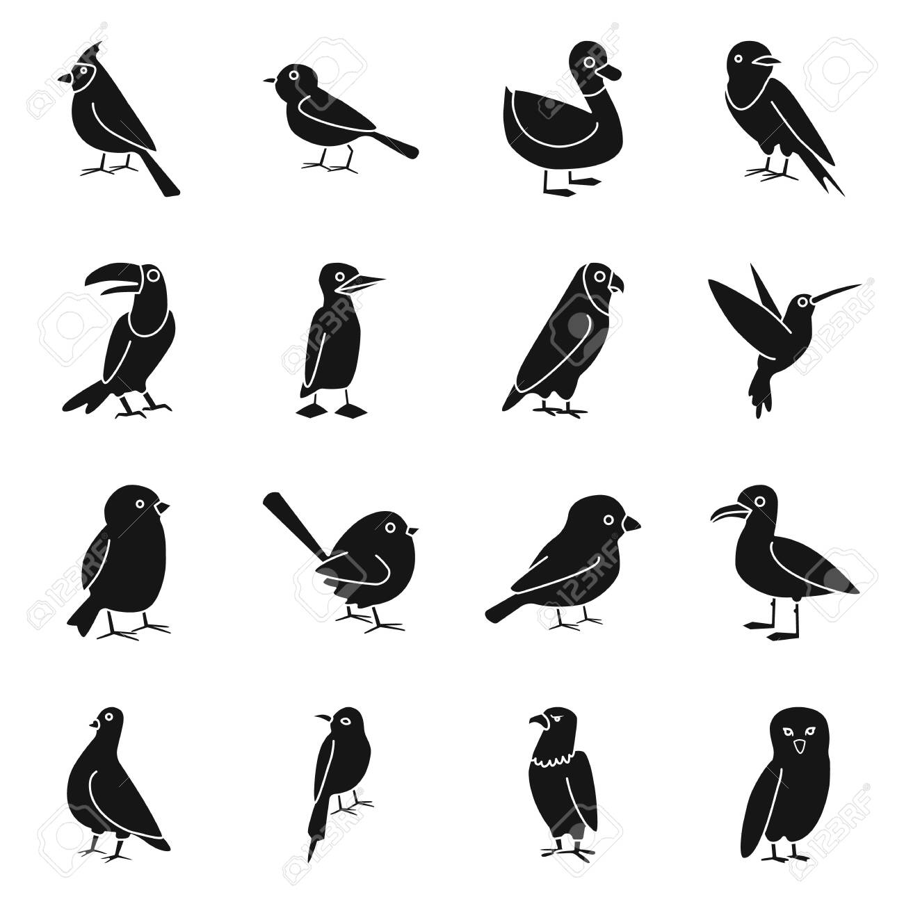 Isolated object of animal and wild symbol. Collection of animal and plumage stock vector illustration. - 130286365