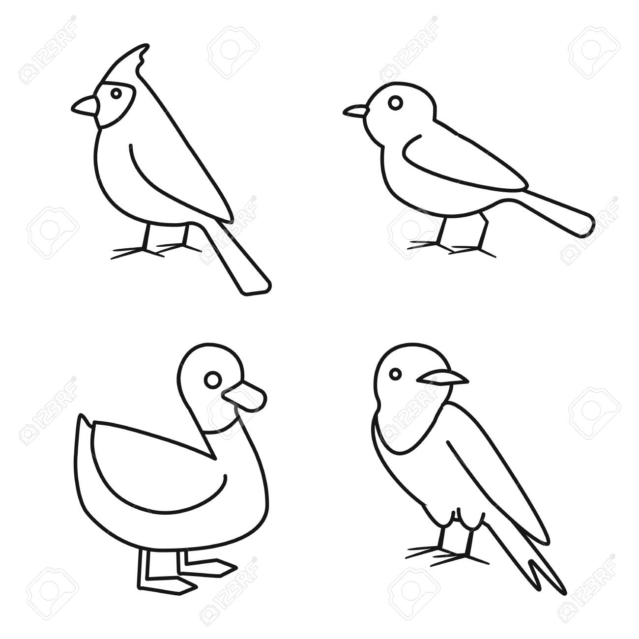 Isolated object of animal and wild logo. Set of animal and plumage vector icon for stock. - 133631700