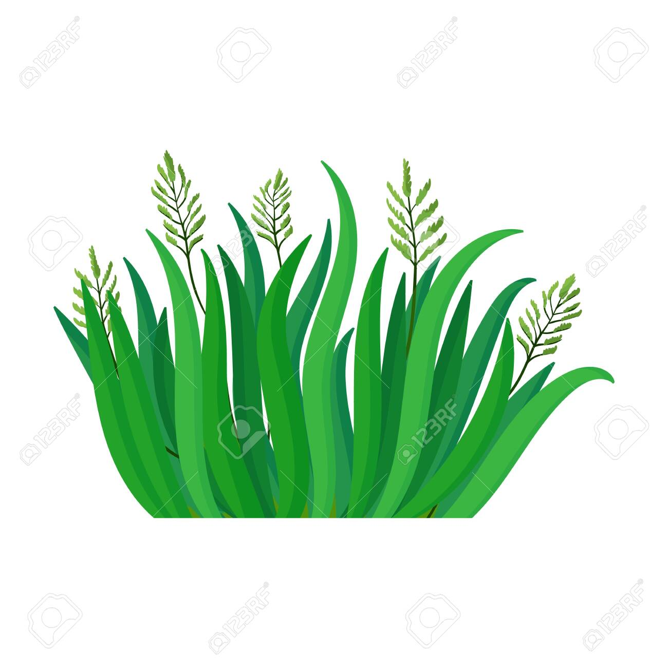 green grass vector icon cartoon vector logo isolated on white royalty free cliparts vectors and stock illustration image 144486781 123rf com