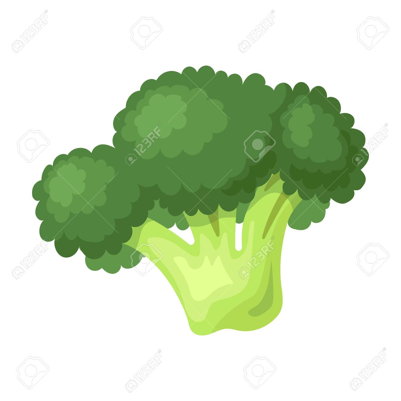 broccoli vector icon cartoon vector icon isolated on white background royalty free cliparts vectors and stock illustration image 147175490 broccoli vector icon cartoon vector icon isolated on white background