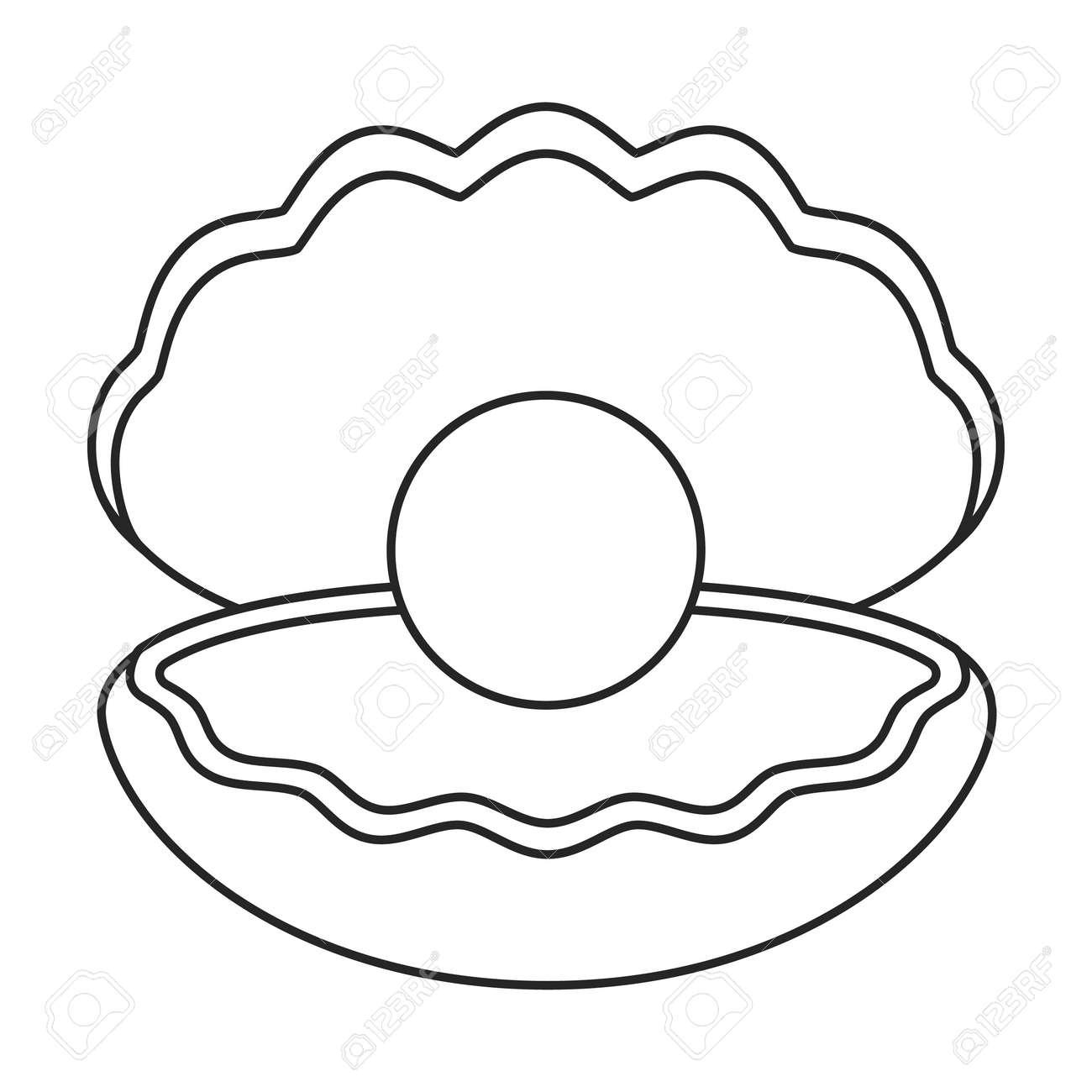 Pearl shell vector outline icon. Vector illustration pearl shell on white background. Isolated outline illustration icon of seashell - 168841078