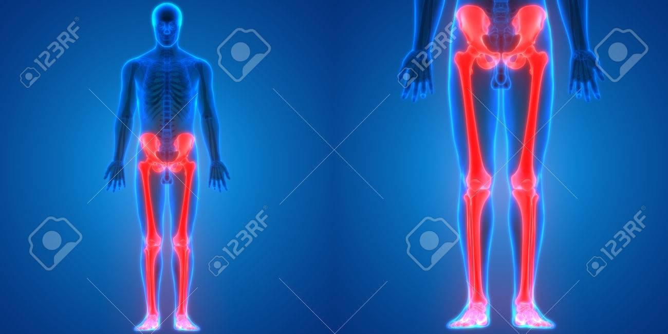 Fibromyalgie: Wenn der ganze Körper schmerzt