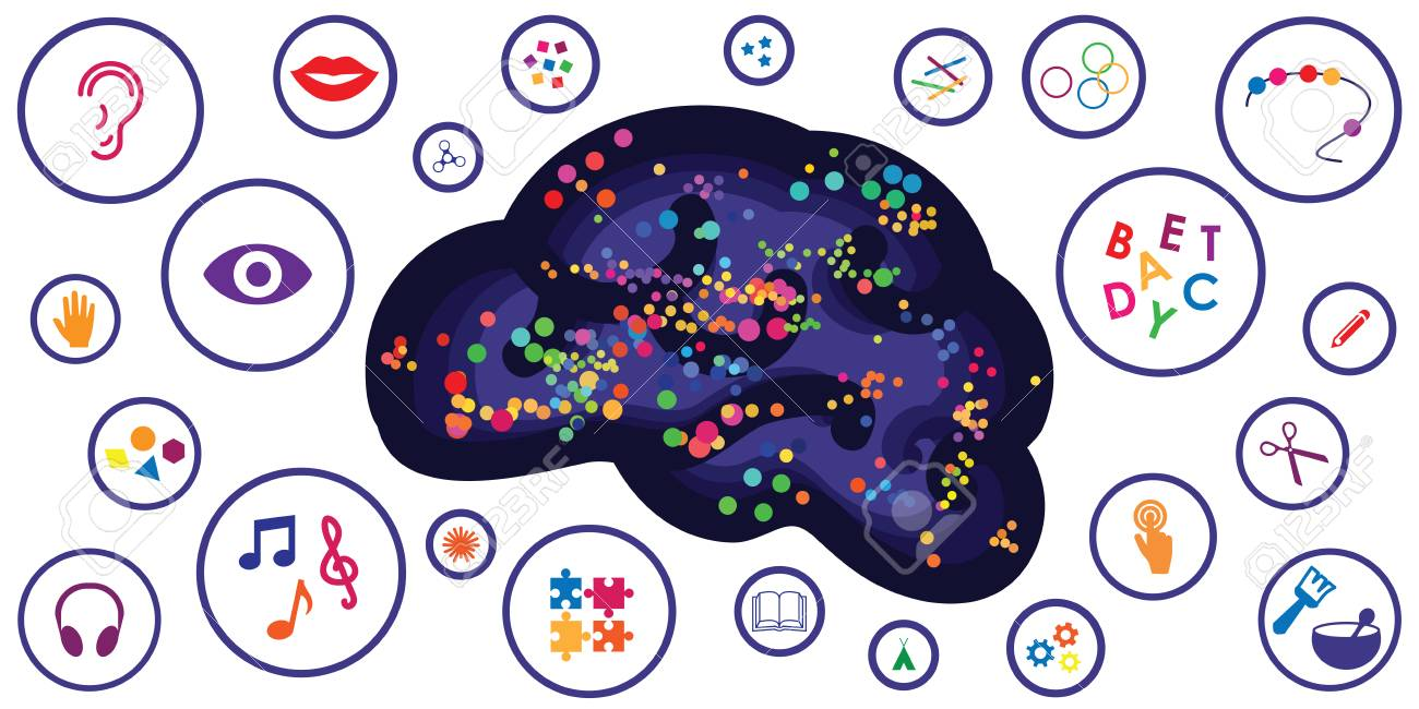 vector illustration of different sensory toys and motor skills tools for brain and thinking development - 102568515