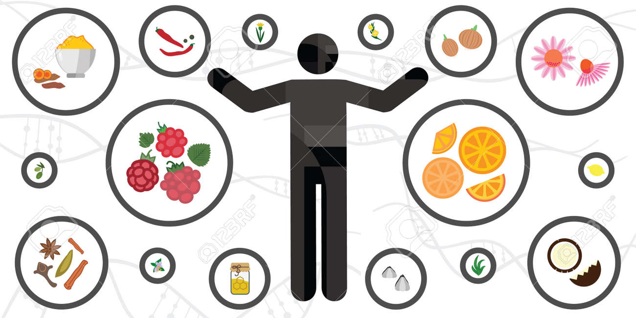 vector illustration of human body and natural immunity boosting plants - 169022790