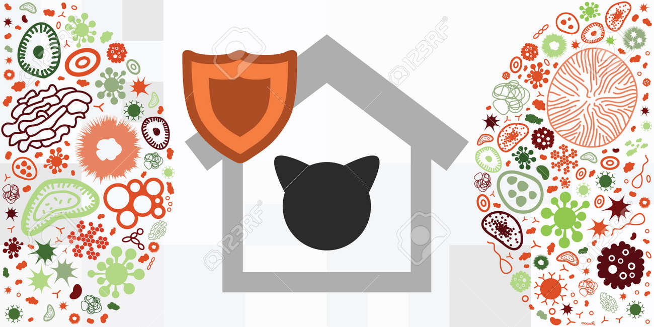 vector illustration of cat and home symbols for pets protection from viruses - 169022823