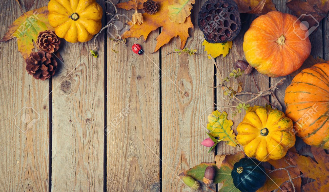 Thanksgiving Dinner Background Autumn Pumpkin And Fall Leaves