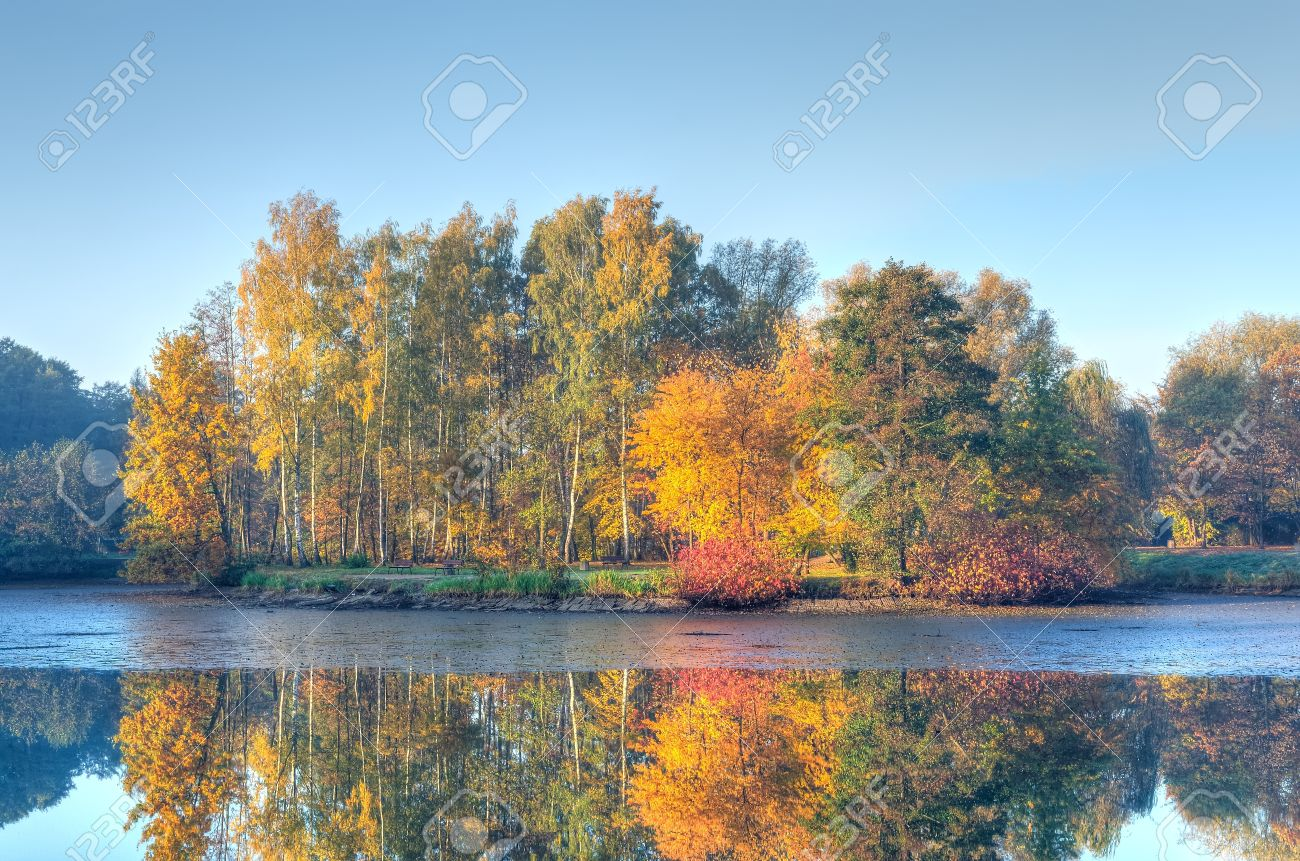 Autumn landscape. Pond and autumn colored trees in the park. - 47568491