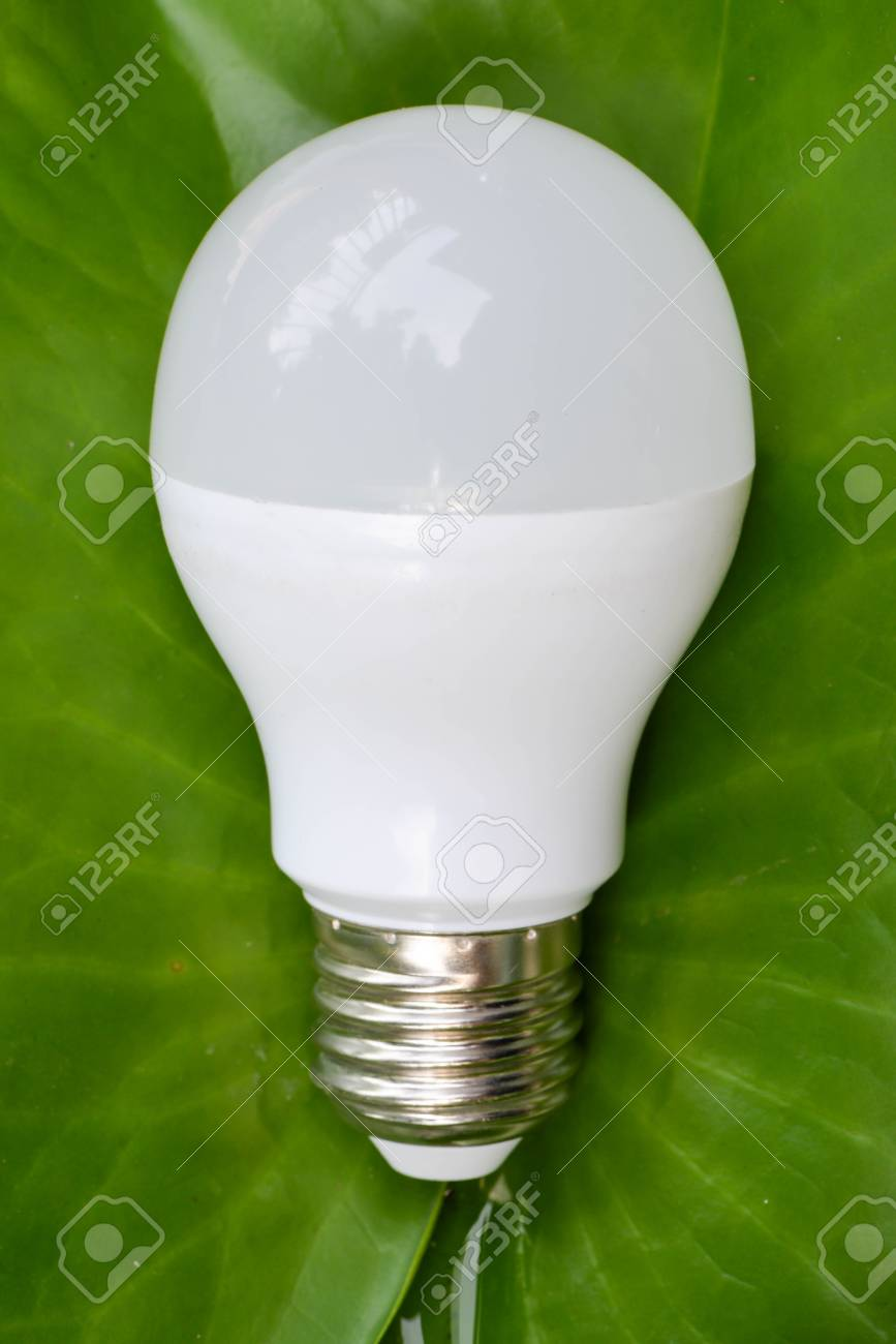 LED Bulb On The Green Leaf - The Eco Friendly Technology Stock Photo ...
