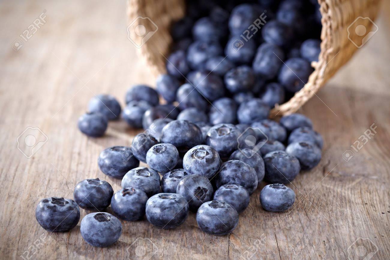 fresh blueberries Stock Photo - 10181807