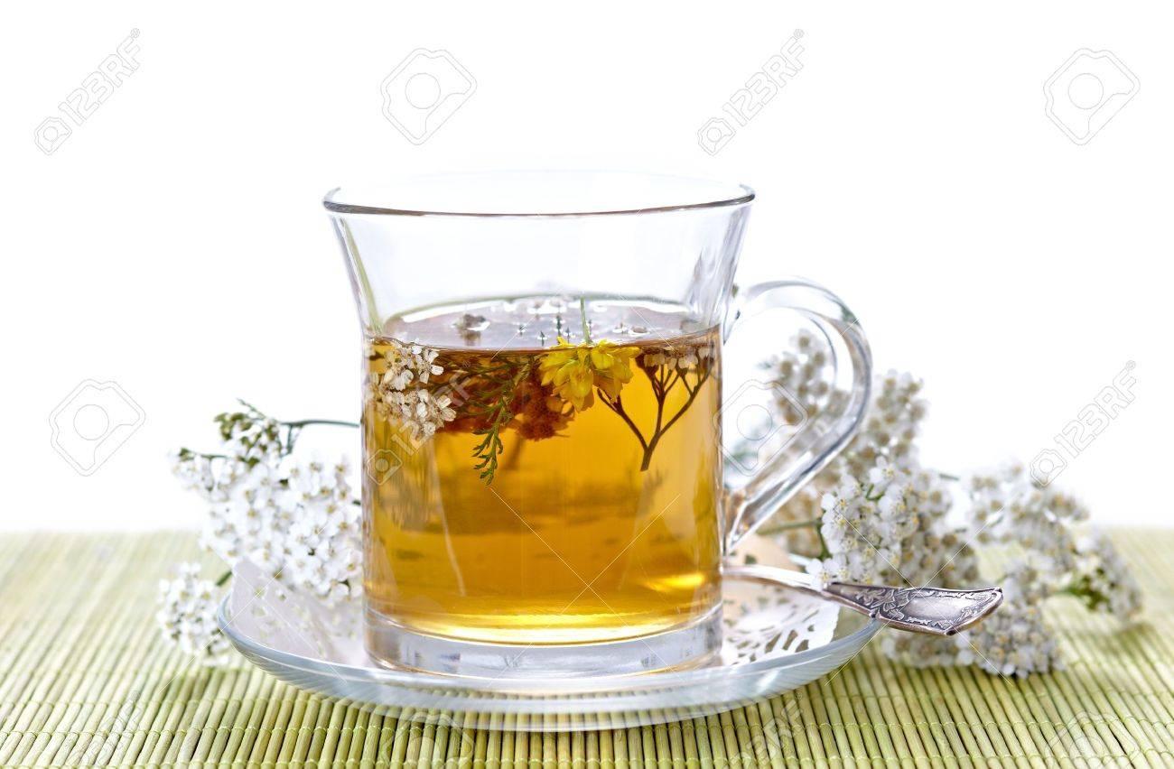 herbal tea Stock Photo - 10425502