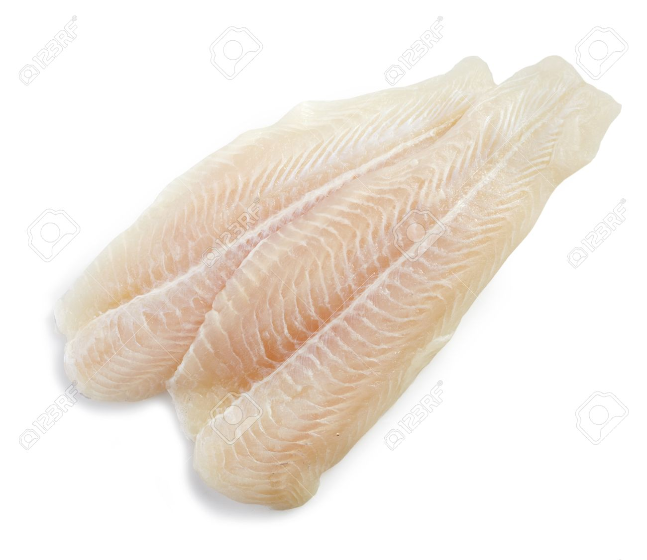 Fresh Raw Pangasius Fish Fillet On White Background Stock Photo Picture And Royalty Free Image Image 20106255