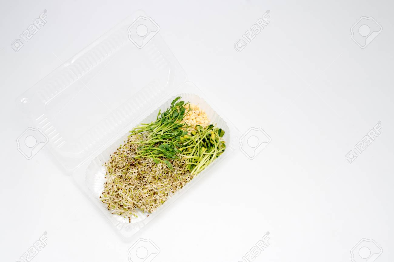 Different Types Of Micro Greens In Plastic Container On White