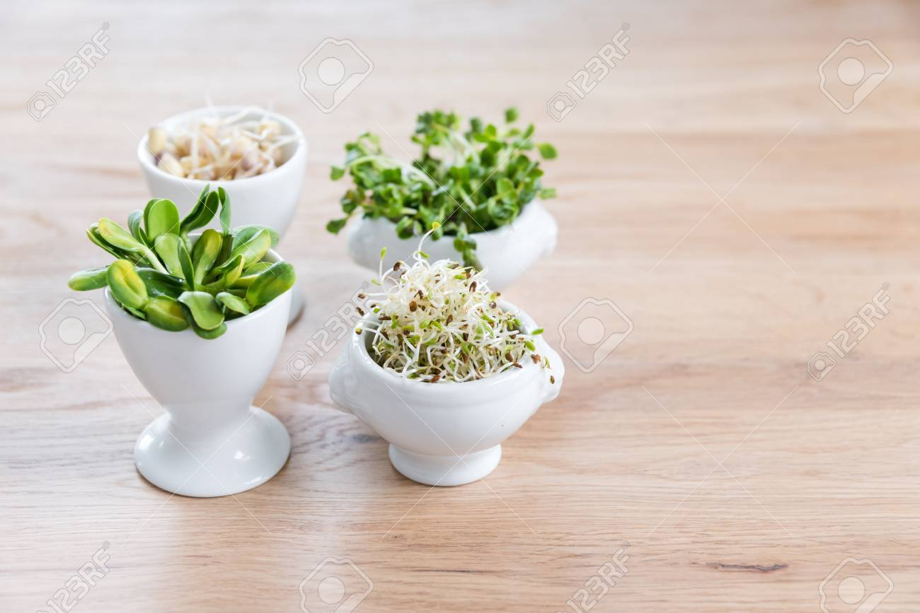 Different Types Of Micro Greens In White Bowls For Sauces On Stock