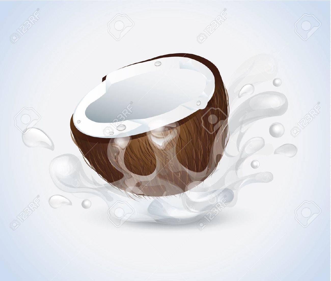 Coconut Splash Stock Vector - 21075510