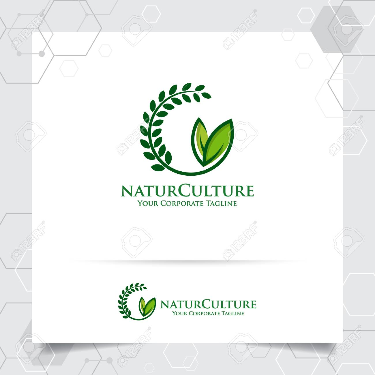 Agriculture logo design with concept of grain icon and plant