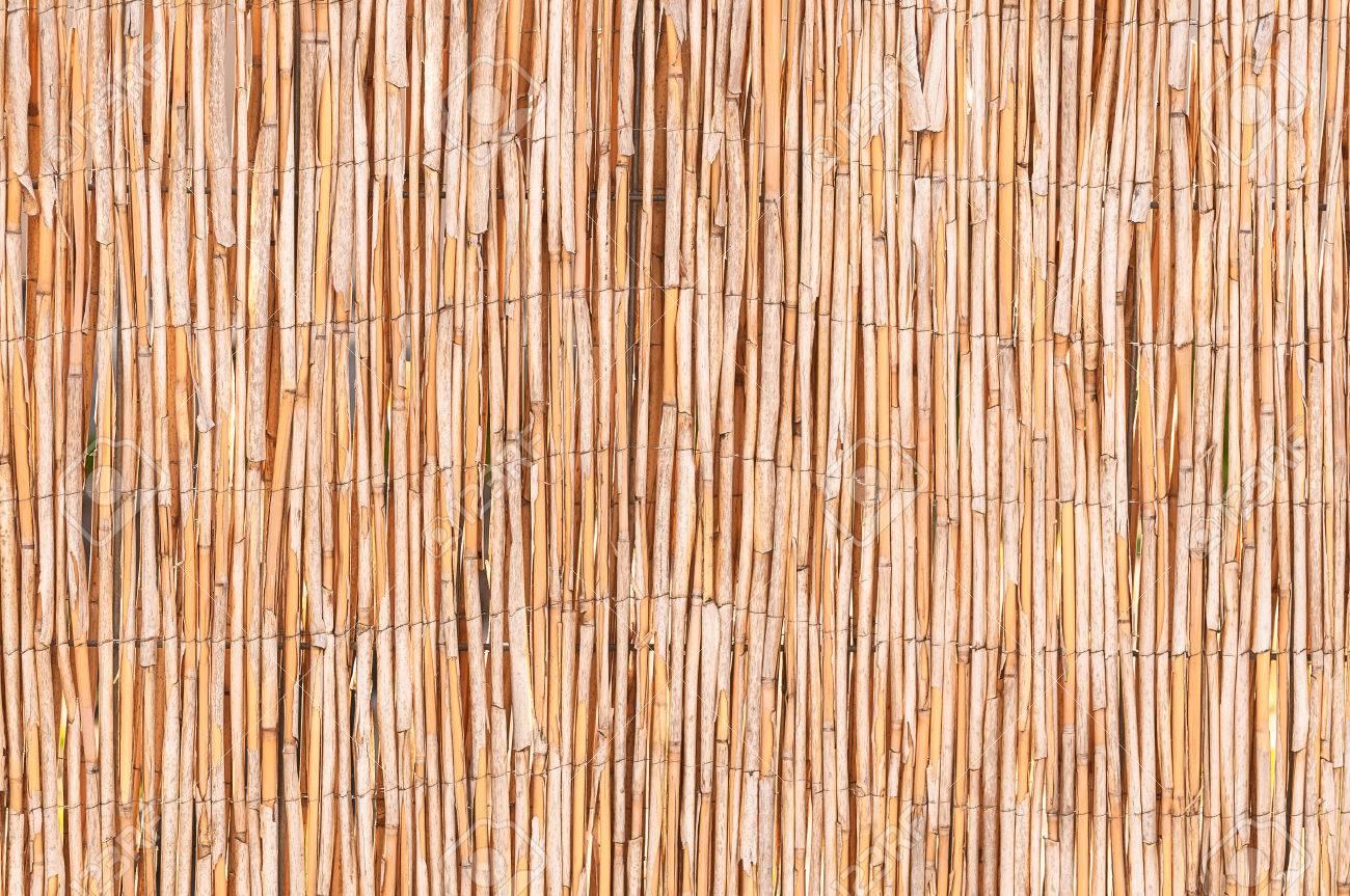 schilfmatte in nahaufnahme für hintergrund oder textur; sichtschutz