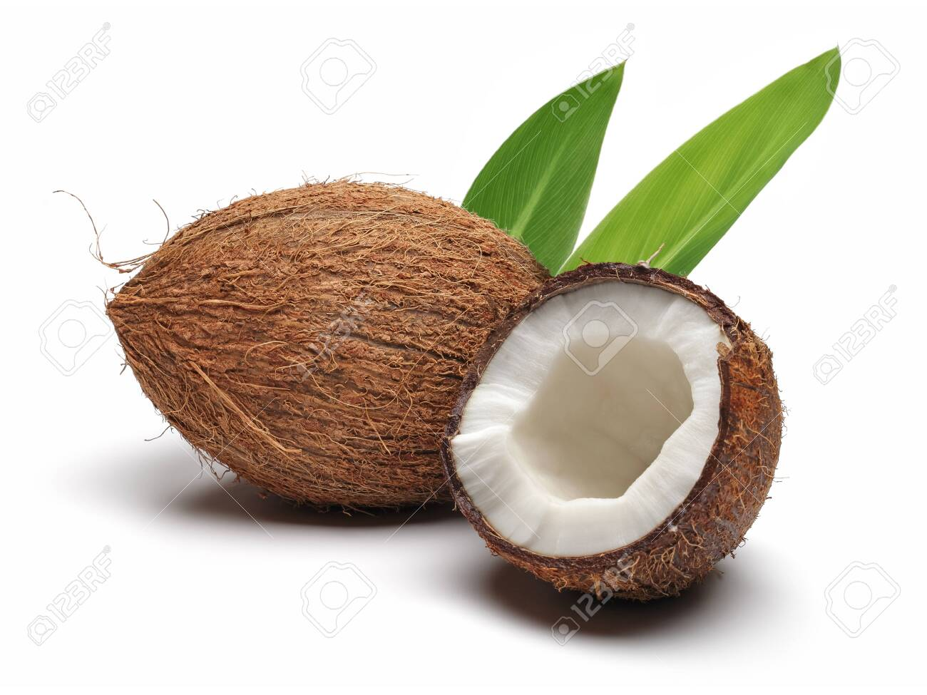 Fresh coconut broken in half with leaf isolated on white background - 124005193