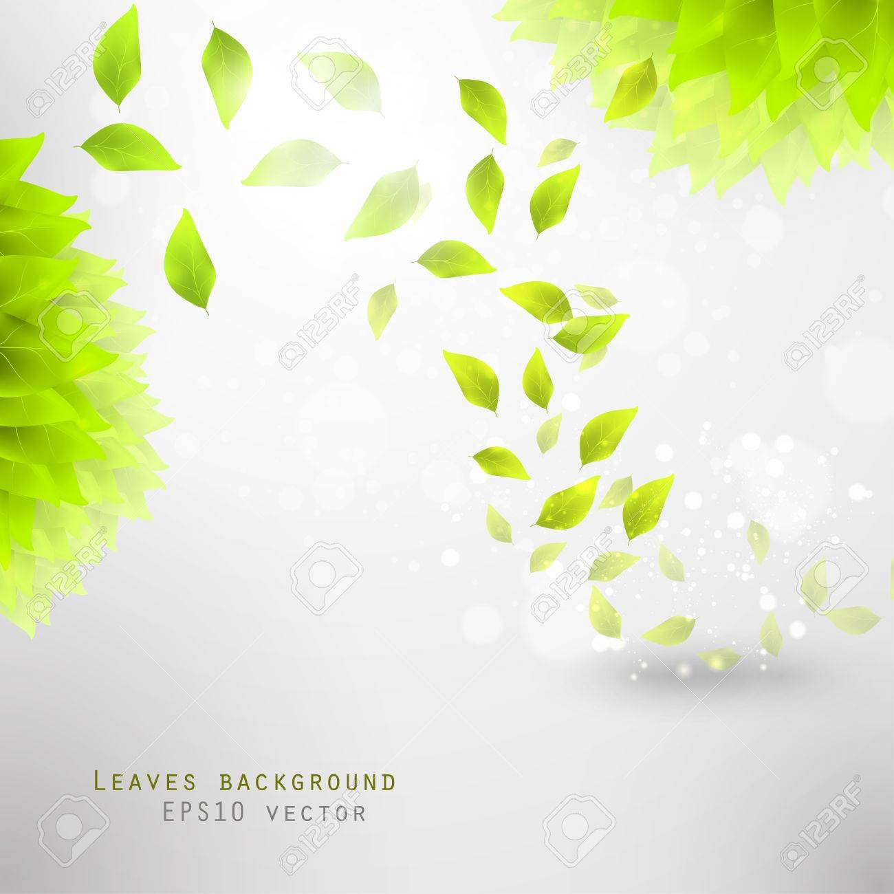 green leaves, eco background eps10 - 12084498
