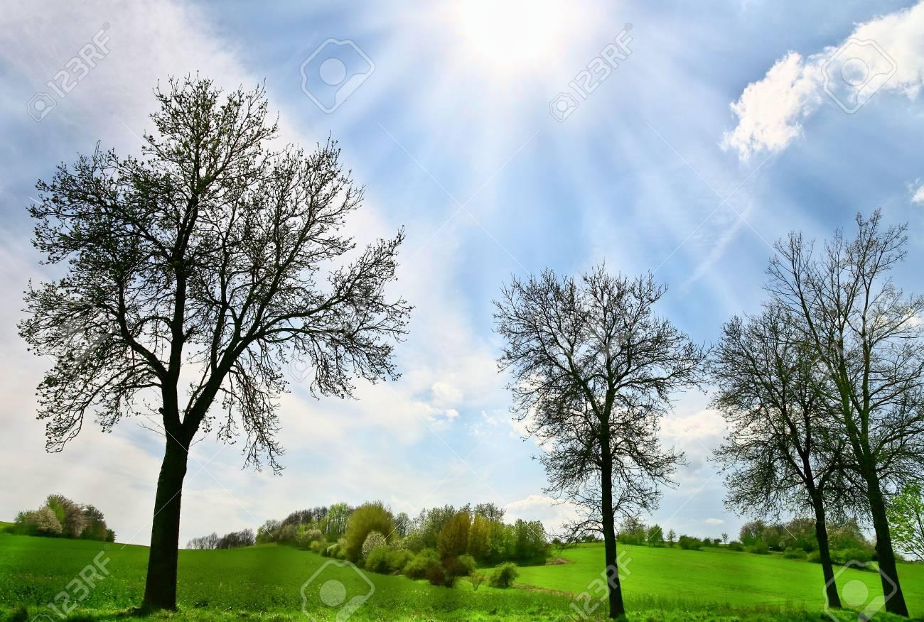 Beautiful spring day Stock Photo - 6988049