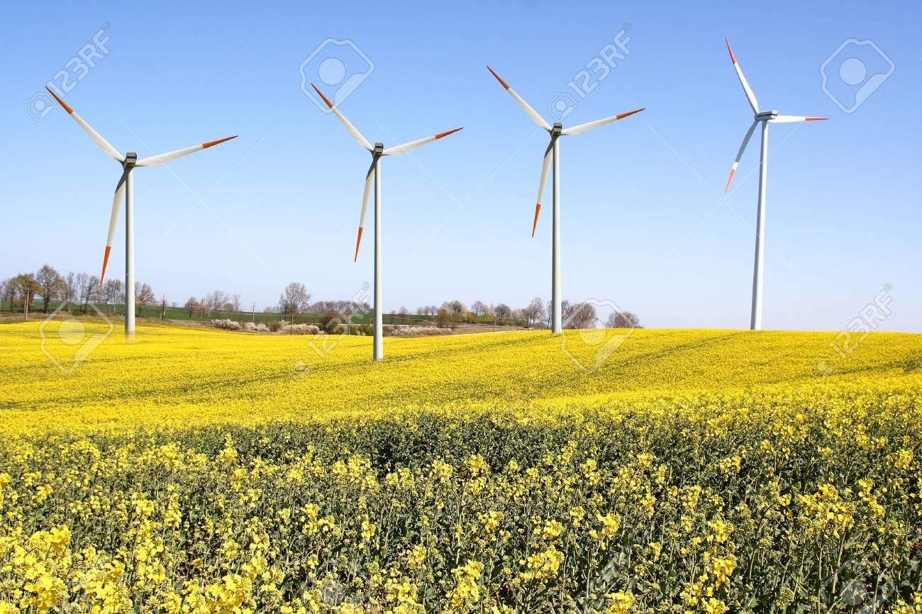 Windmills Stock Photo - 7232990