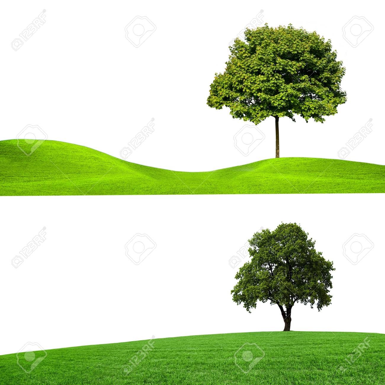 nature, banners Stock Photo - 10549136