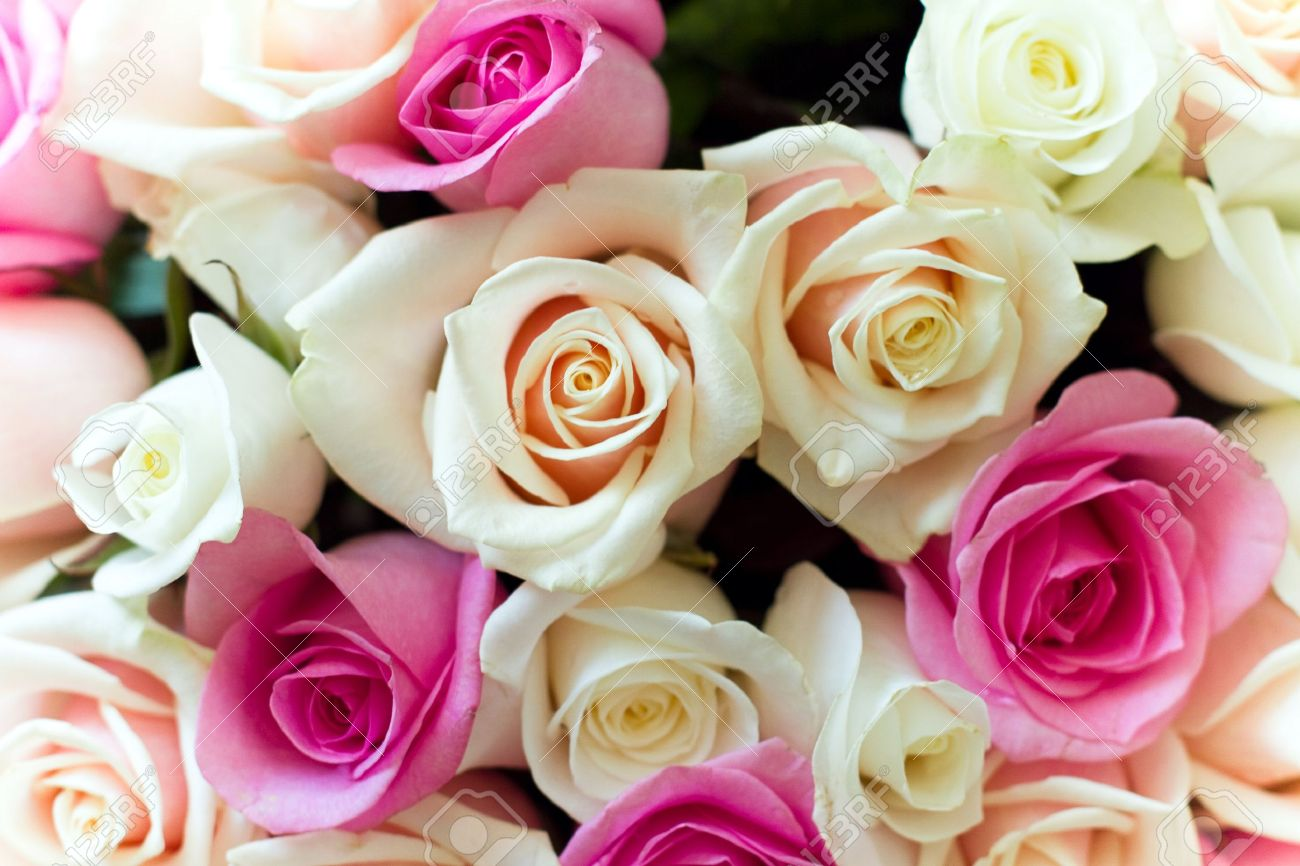 Beautiful colorful roses bouquet Stock Photo - 10012916