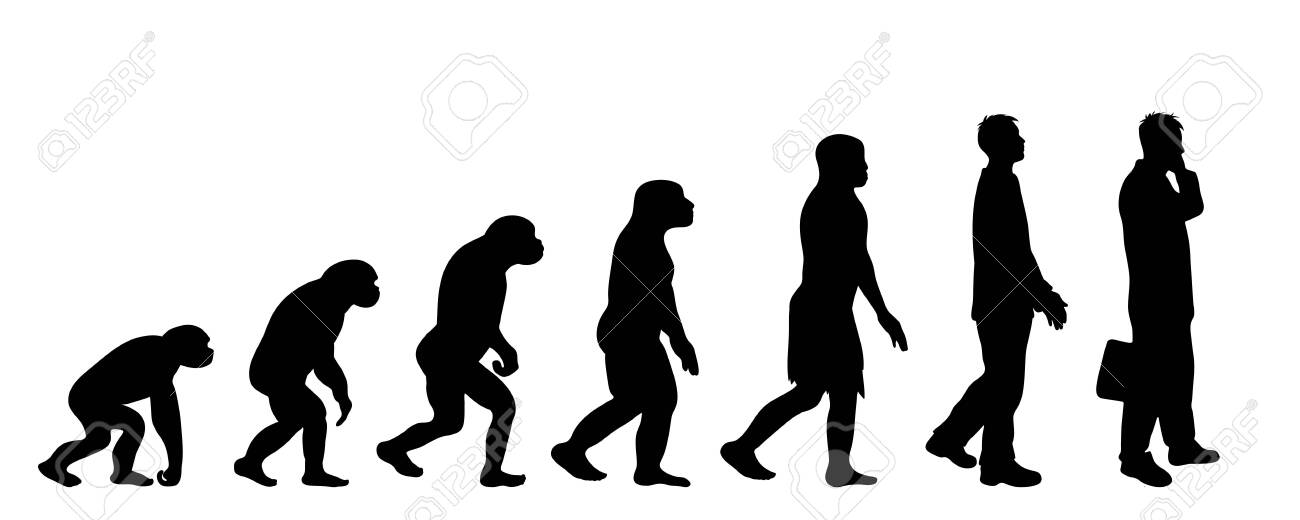 Painted theory of evolution of man. Vector silhouette of homo sapiens. Symbol from monkey to businessman. - 122032988