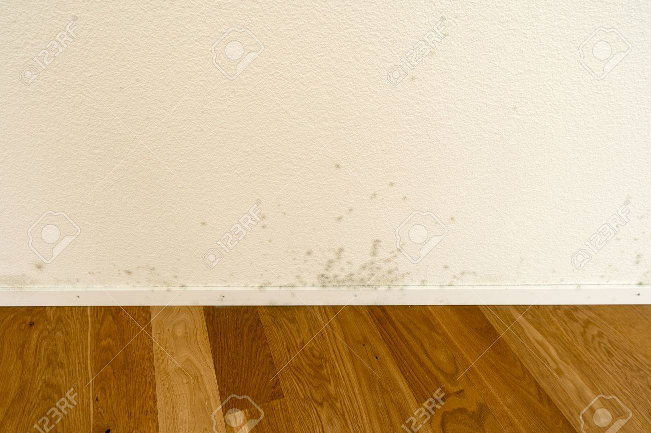 Mildew And Mold On White Wall Of Empty New Apartment Stock Photo   83320987
