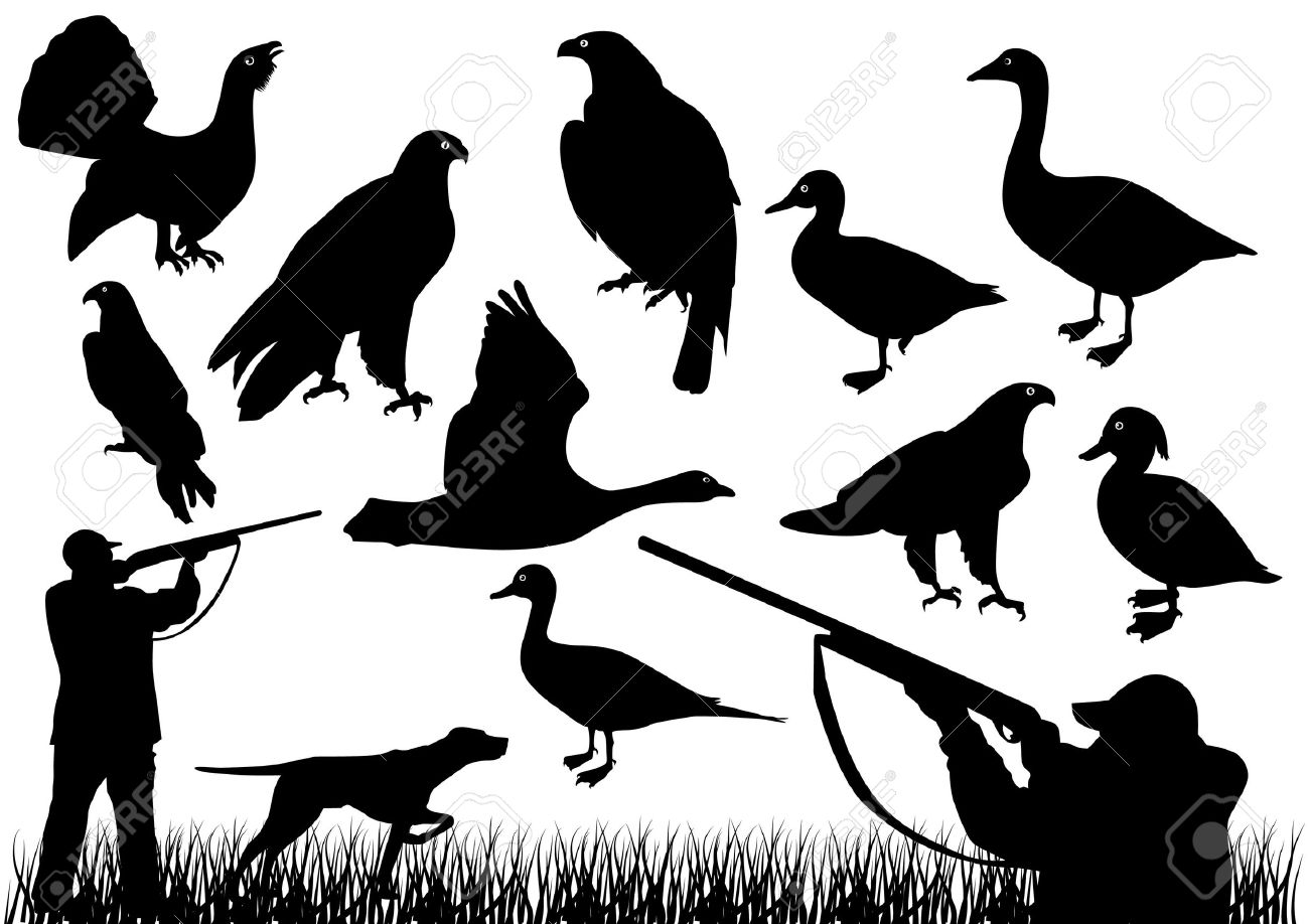 Duck hunting Stock Vector - 10031004