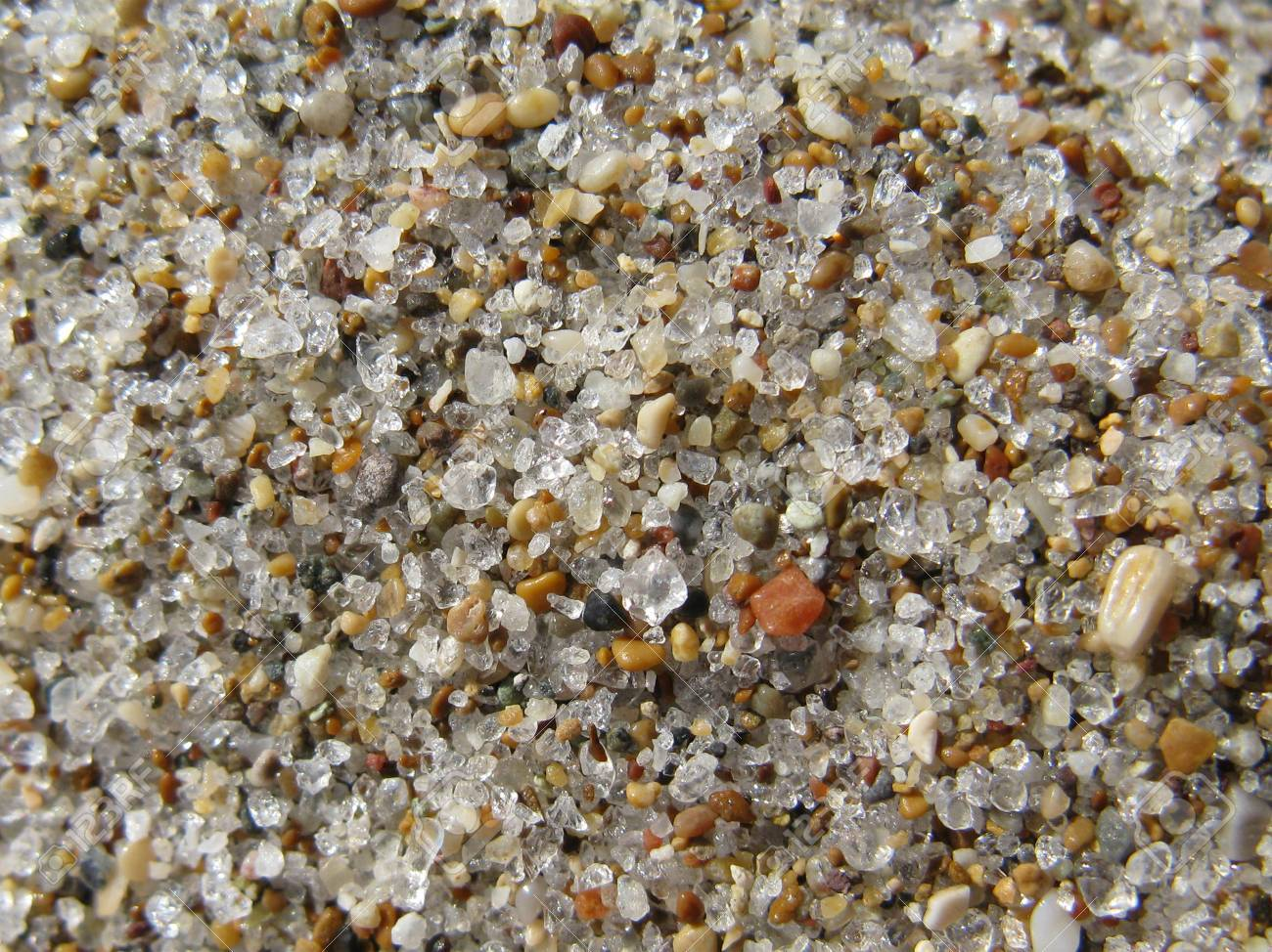 small grains of colored sand on a beach Stock Photo - 16450180