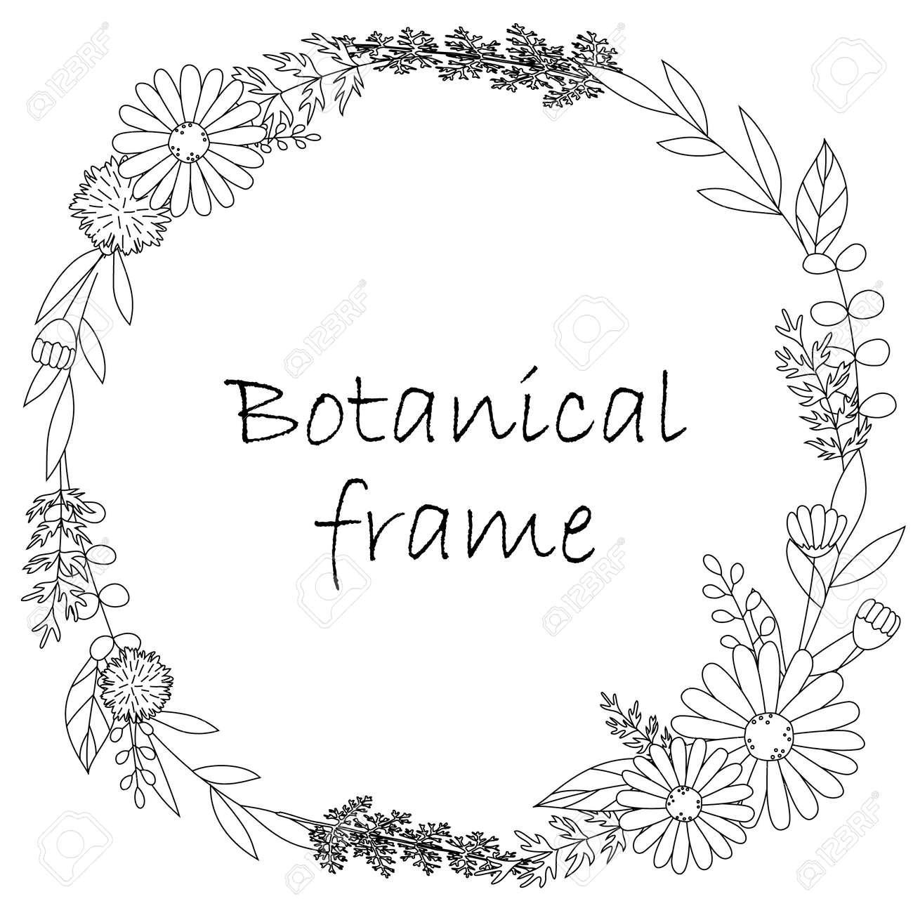 Botanical frame illustration. Invitation or greeting card templates (white background, vector, cut out) - 167854317