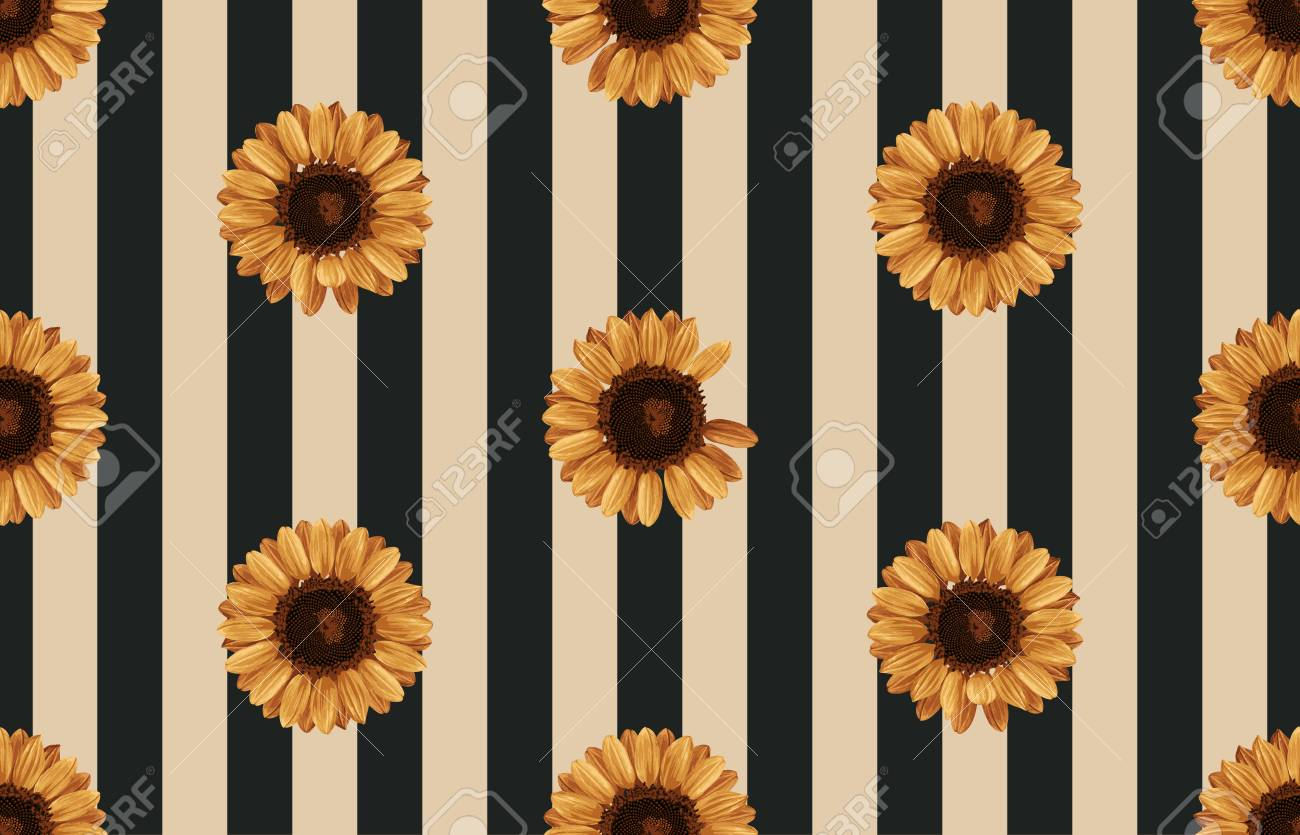 photo relating to Printable Pictures of Sunflowers identify Inventory Case in point