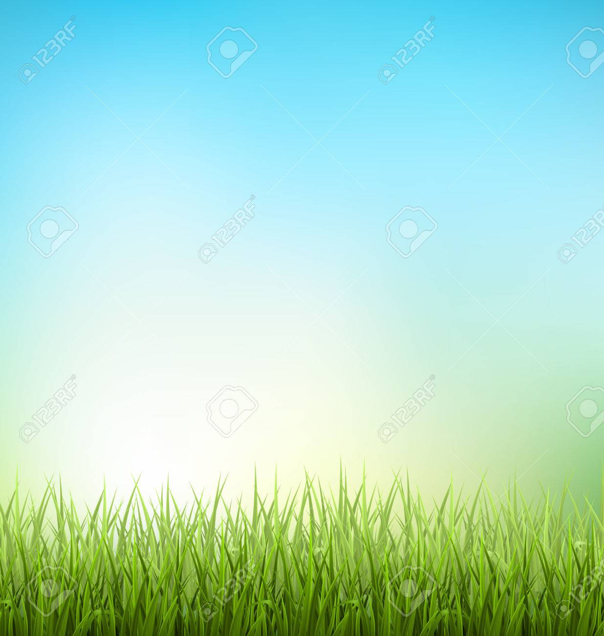 Green grass lawn with sunrise on blue sky - 38977532
