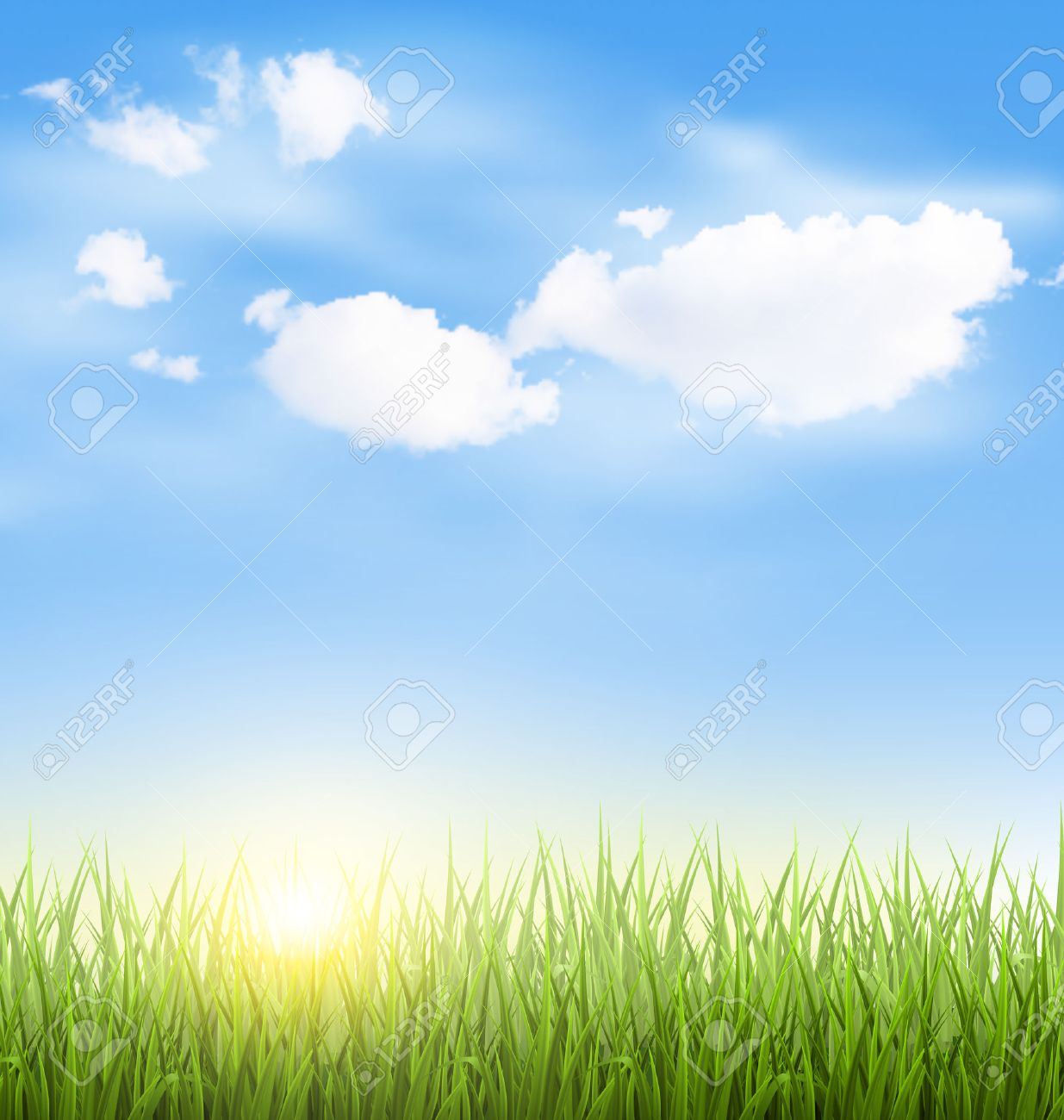 Green grass lawn with clouds and sun on blue sky - 40310335
