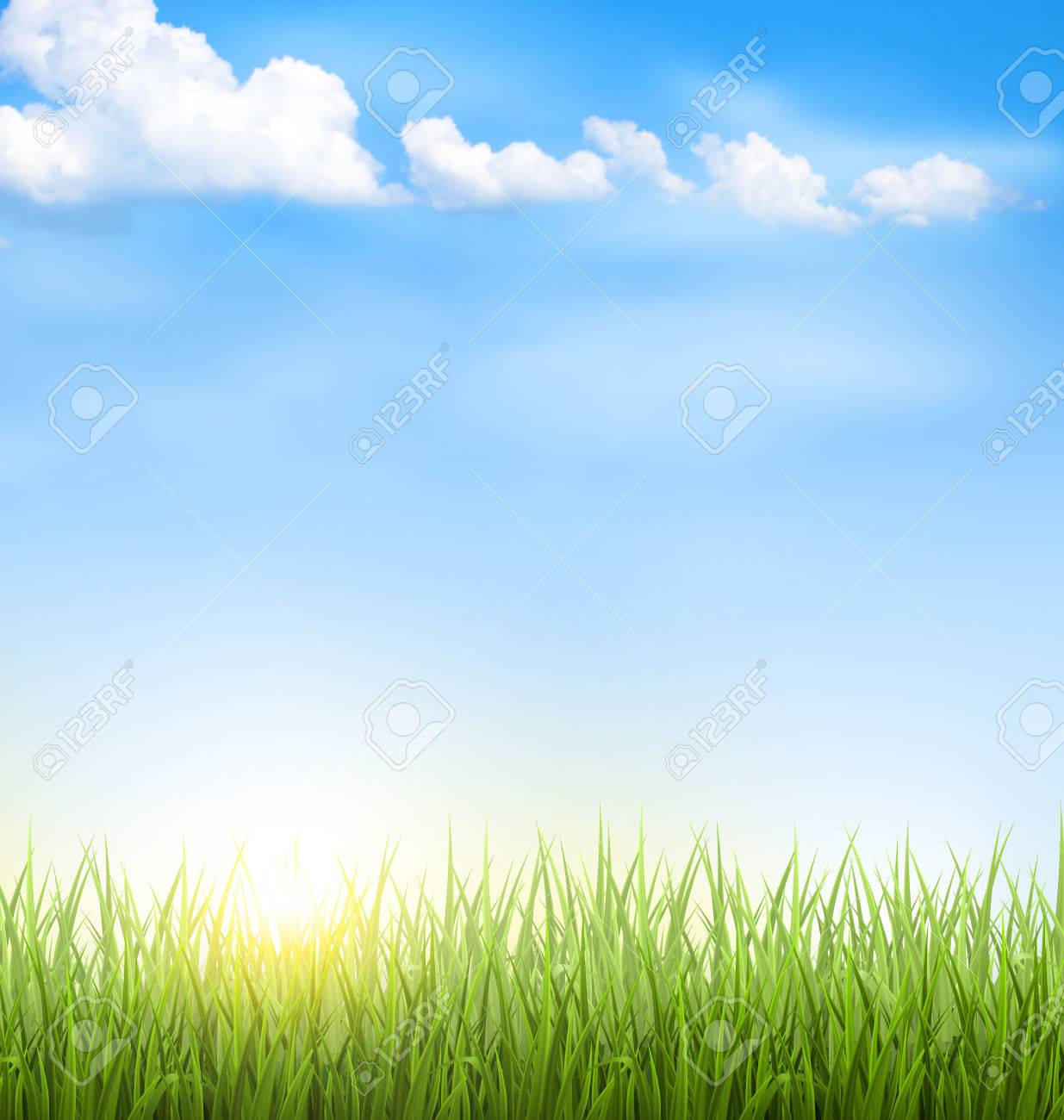 Green grass lawn with clouds and sun on blue sky - 41037760