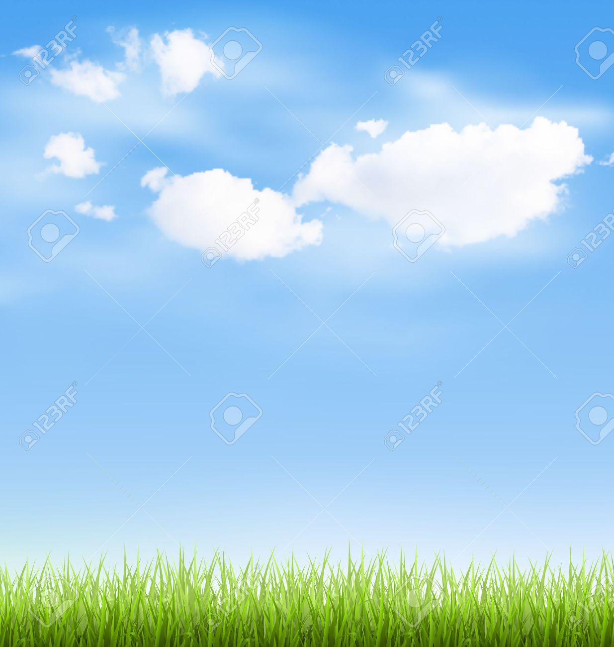 Green grass lawn with clouds on blue sky - 41448048