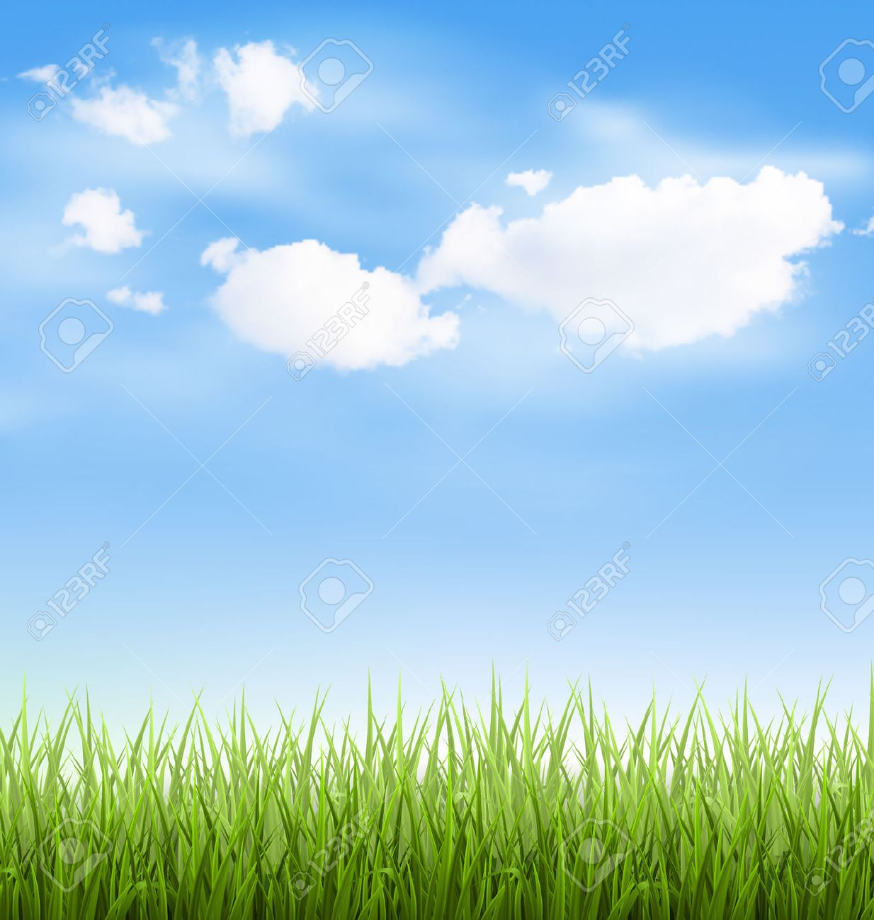 Green grass lawn with clouds on blue sky - 42139658