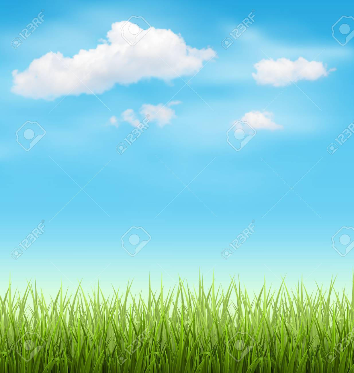 Green Grass Lawn with Clouds on Light Blue Sky - 42529632
