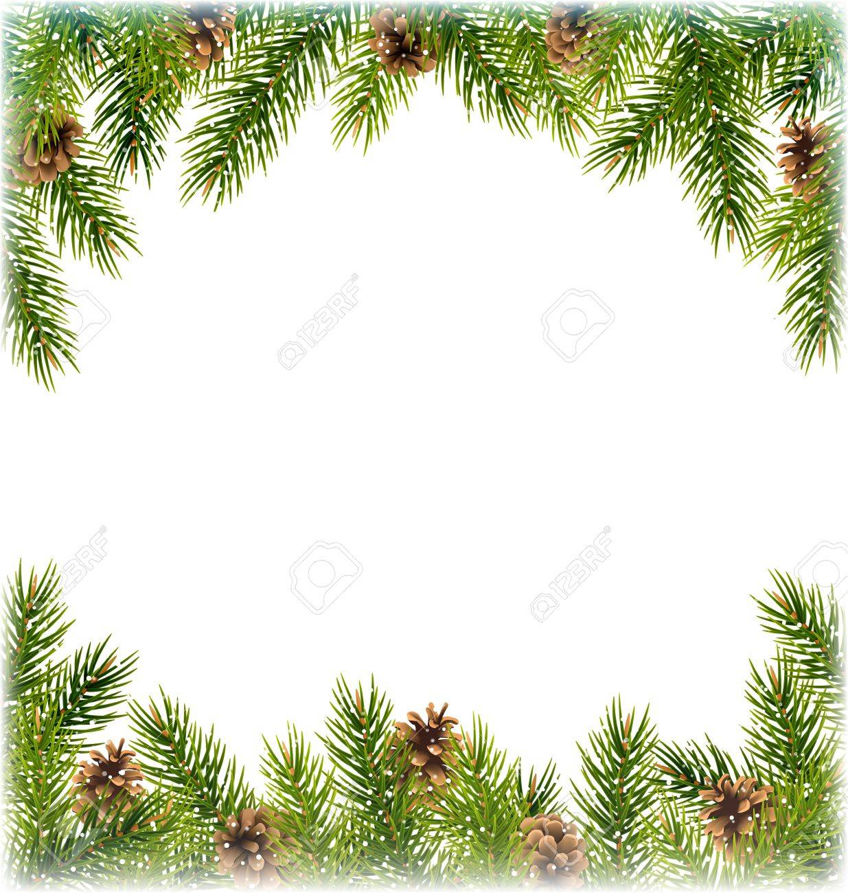 Green Christmas Tree Pine Branches With Pinecones Like Frame ...