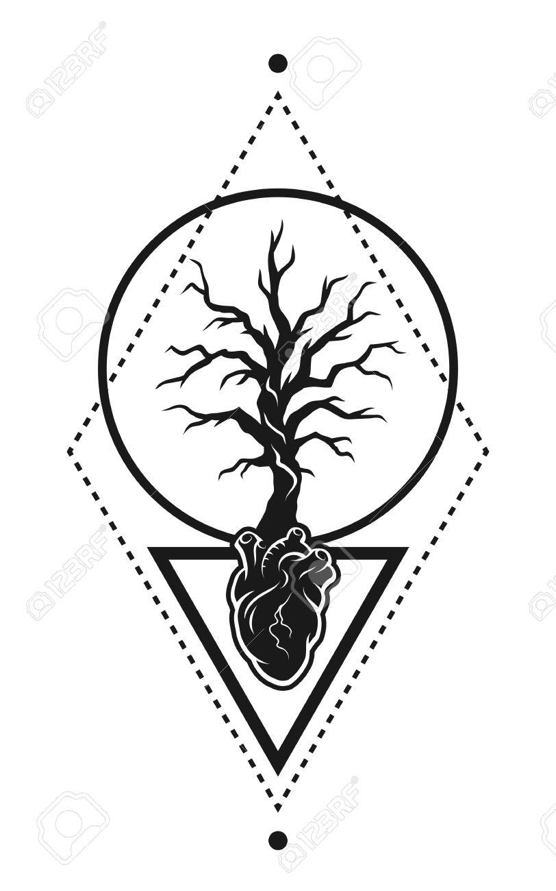 Anatómica Del Corazón Humano, Y Que Crece A Partir De Un árbol Como ...