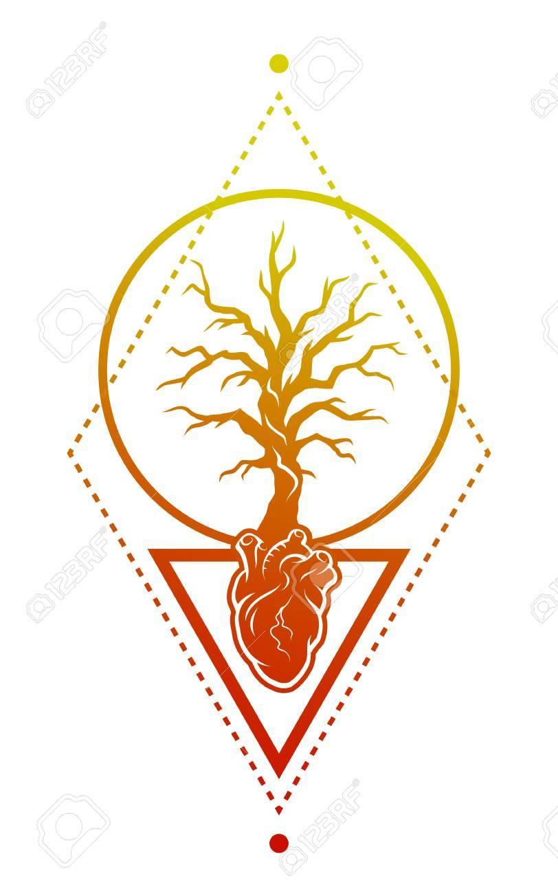 Anatomía Del Corazón Humano Y El árbol Como Símbolo De La Vida ...