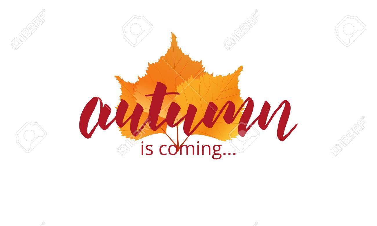 Der Herbst Kommt Herbst Schriftzug Und Herbstblätter Vorlage Für