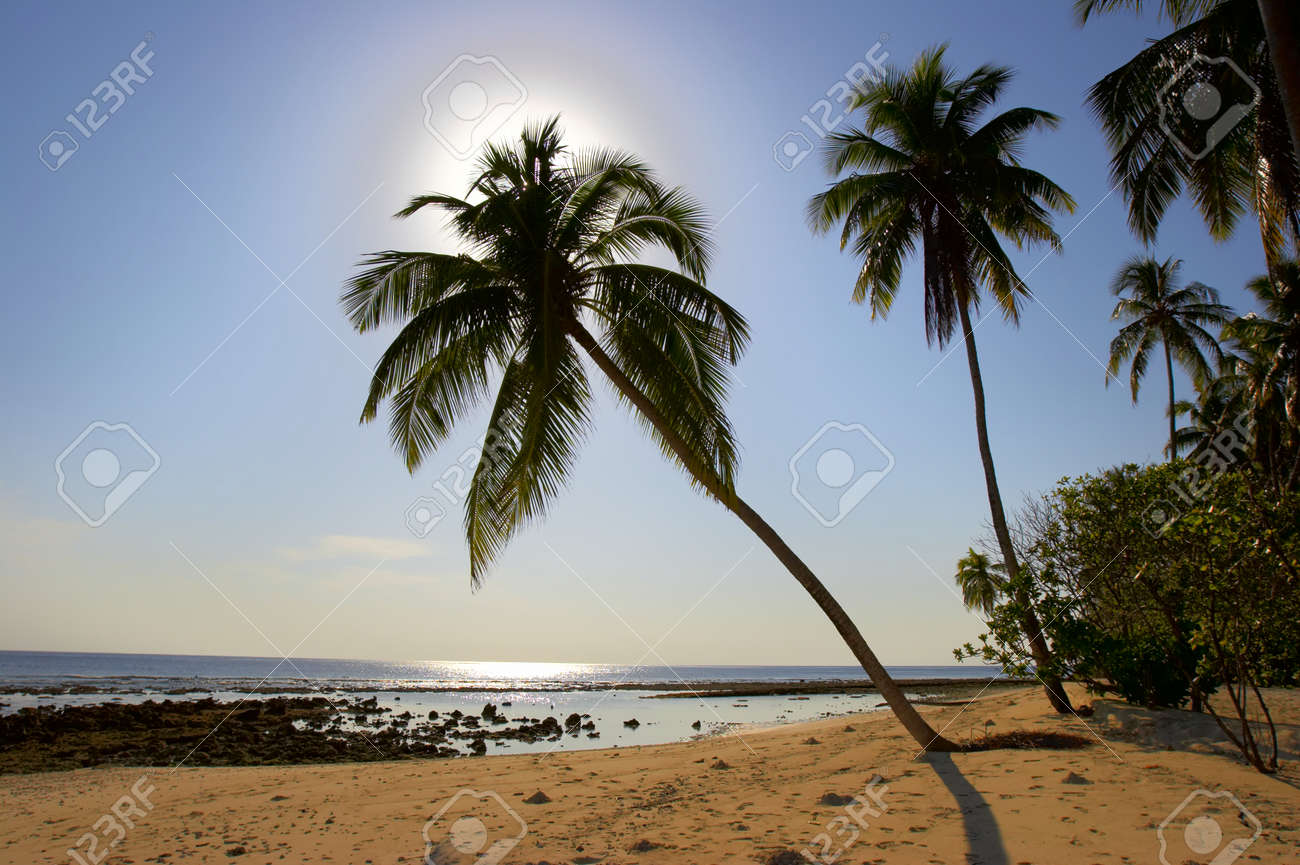 SUPERIOR MORNING BEACH WITH PALM TREES IN INDIAN OCEAN, MALDIVE ISLAND, FILITEYO Stock Photo - 1385364