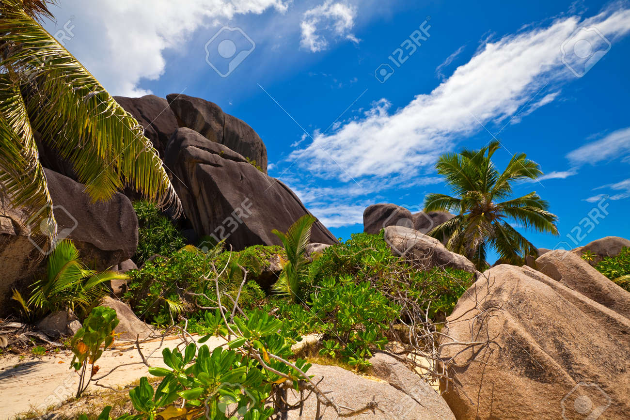 Path through a tropical jungle with a big stones, Seychelles, La Digue island Stock Photo - 13148446